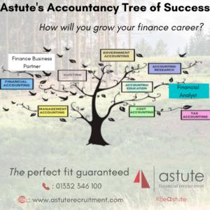 Astute Recruitment Ltd - Our accountancy career tree